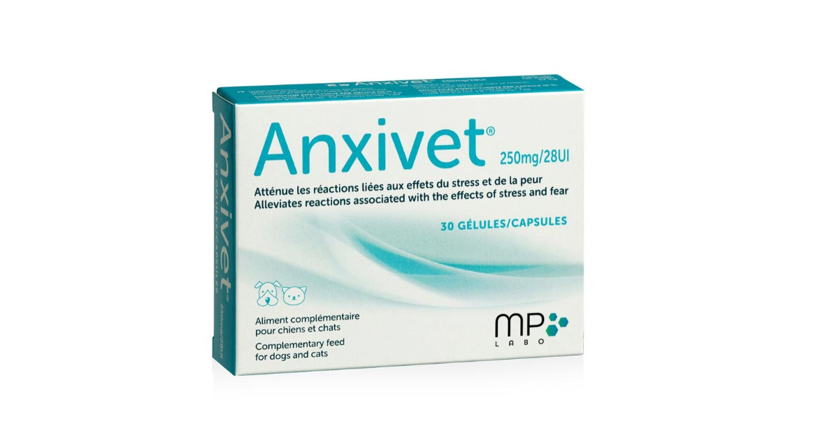 Anxivet MP Labo